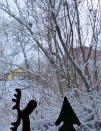 winter in oslo flyttetilnorge