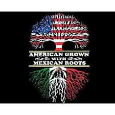 So Mexican Store Funny T Shirts American Grown With Roots In Stock