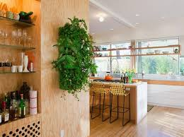 Wall Decorating With Indoor Plants