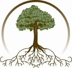 Tree Roots clip art Branding Design Type Pinterest