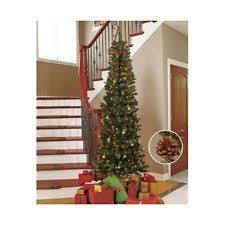 Pre Lit Pencil Cashmere Christmas Tree by Pencil Christmas Tree Prelit Vickerman 30703 3 U0027 X 21