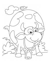 Printable Cow Coloring Pages For Kids Page Picture To Color Of A