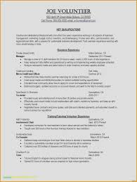 Volunteer Work On Resume Example With Experience
