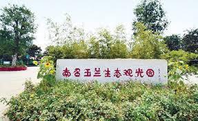Nanzhao hosts magnolia festival Charming Nanyang