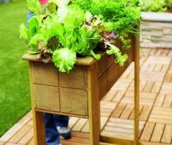 faire un potager sur le balcon quelques idées créatives