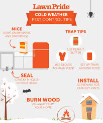 Cold Weather Pest Control Tips | Lawn Pride Bugster Bugs Pest Control Wordpress Theme For Home Mice Rodent Nj Get Free Inspection By Licensed Layla Mattress Review Reasons To Buynot Buy 2019 Mortein Powergard Flea Crawling Insect Bomb 2 X 150g 1count Repeller 7 Steps A Healthy Lawn Pride Holly Springs Sameday Service Triangle Family Dollar Smartspins In Smart Coupons App Spartan Mosquito Eradicator Yards Pack Rottler Solutions Experts In St Louis