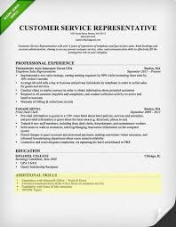 Customer Service Skills Section Resume Samples For Trainer