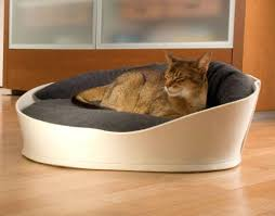 Beds Luxury Pet Beds For Dogs Small Cats Fancy Dog luxury pet