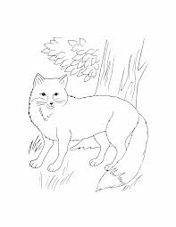 Wild Animal Coloring Pages Animals 9 Kids Printables Free Book