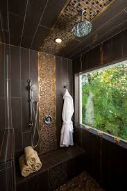 shower ceiling tile ideas bathroom contemporary with wall hook