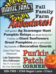 Lane Farms Pumpkin Patch 2015 by Local Pumpkin Patches Growing Up Chico Magazine