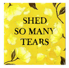 100 2pac shed so many tears mp3 players stuff i u0027ve