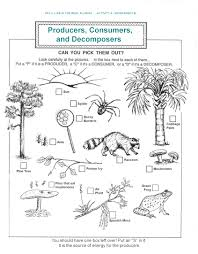 Decomposers Worksheets For Kids | Archbold Biological Station ... Attracting Barn Owls Natural Rodent Control Gardening Energy Transfer And The Carbon Cycle Worksheet Edplace Tritec Science Learning Community Projects Organisms Roles Loss In Food Chain Ecology Biology Lecture Slides Outreach Materials Owl Original Mixed Media Pating 6x8 Inches Bird Wild Decomposers Worksheets For Kids Archbold Biological Station 14 Images Of Wetland Coloring Pages Diagram 037_13d0568f9211773be9a9d4d89c530b2png