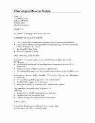 Example Of Resume Summary Examples For College Students