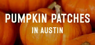 Pumpkin Patch North Austin Tx by How To Do Fall In Austin