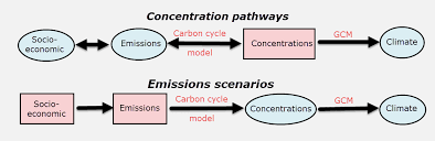 Define The Word Carbon Sink by Carbon Cycle Feedbacks And The Worst Case Greenhouse Gas Pathway