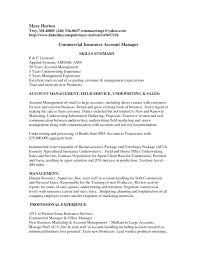 Account Executive Resume Sales Example Manager Summary