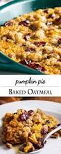 Rachael Ray Pumpkin Lasagna by 600 Best Pumpkin Desserts Images On Pinterest Pumpkin Recipes