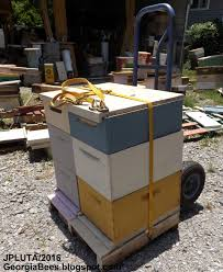 BEEKEEPING Beekeeper Honey Bees Pollen Wax Candle Propolis Queen ... Import What Is The Meaning Of Word Import Conscious Lifestyle Hand Trucks Moving Supplies The Home Depot Amazoncom Harper 800 Lb Capacity Steel Appliance How To Transport A Fridge By Yourself Part 1 Youtube Electric Stair Climbing Truck Electrics 2018 Best Choice Products 330lbs Platform Cart Folding 5 You Must See Stairclimber Wikipedia Pallet Jack Collapsible Alinum At Ace Hdware