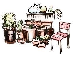 topfgarten und gardening saemereien ch