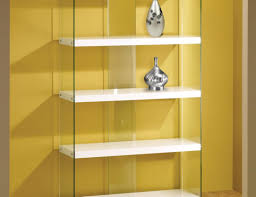 Bed Bath And Beyond Decorative Wall Shelves by Shelving Wonderful Glass Shelf Bookcase Metal And Glass Wall