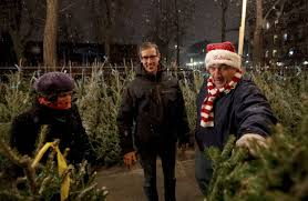 Does Aspirin Work For Christmas Trees by Location Is King In The Christmas Tree Business Wsj