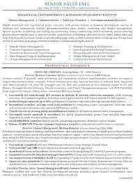 Resume Examples Executive ResumeExamples