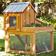 Cedar Chicken Coop Run Garden Planter Green Head Backyard Chicken ... Best 25 Chicken Runs Ideas On Pinterest Pen Wonderful Diy Recycled Coops Instock Sale Ready To Ship Buy Amish Boomer George Deluxe 4 Coop With Run Hayneedle Maintenance Howtos Saloon Backyard Images Collections Hd For Gadget The Chick Chickens Predators Myth Of Supervised Runz Context Chicken Coop Canada Dirt Floor In Run Backyard Ultimate By Infinite Cedar Backyard Coup 28 Images File