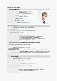 40 Unique Insurance Resume Format Elegant Marketing Templates
