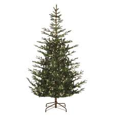 Harrows Artificial Christmas Trees by Martha Stewart Living 7 5 Ft Pre Lit Feel Real Spruce Artificial