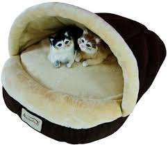 Armarkat Cat Bed by Armarkat Slipper Shape Pet Bed Mocha Beige Chewy Com