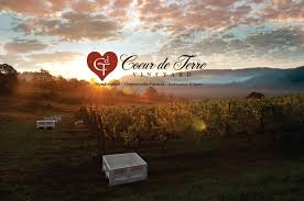 Coeur De Terre Vineyards Case Study | Wine Im Going Allin With Hangouts For Messaging And Calls Android Top 5 Voip Apps Making Free Phone Calls Patent Us20140254574 Firewall Access Inbound Voip How To Diagnose Packet Loss Help Your Isp Tell Where Its Voip Network Installation Services Yallos App Brings Call Recording Automatic Rnection Choose A Service Provider 7 Steps Pictures Viavi Solutions Webinar Troubleshooting Video Wireshark To Debug Sip Voiphow Replay Captured Hotvoip Save On Google Play