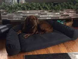 Mammoth Dog Beds by Designer Dog Beds Design Your Own Bed Online Nz Stylish Uk