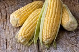 cuisiner des epis de mais épi de maïs au micro ondes apollo recettes apollo recettes par