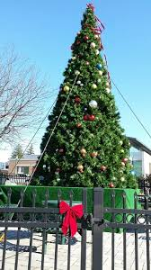 Christmas Tree Pickup Baltimore County by Baltimore County Christmas Tree Pickup 2017 Schedule Beatiful Tree