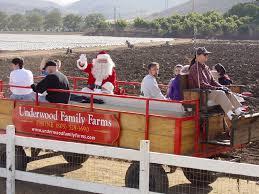 Pumpkin Patch Animal Farm In Moorpark California by Christmas On The Farm U2013 Underwood Family Farms