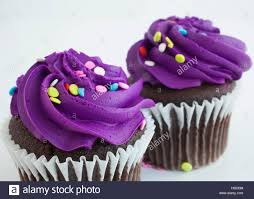 Two chocolate cupcakes that have sprinkles and purple frosting