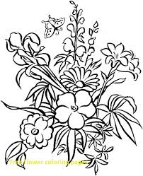 Free Flower Coloring Pages With Best 25 Colouring Book
