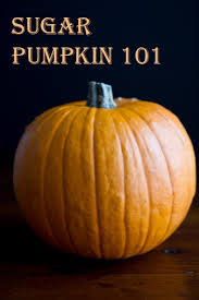 Pumpkin Enzyme Peel Australia by How To Roast A Sugar Pumpkin U0026 Make Fresh Pumpkin Purée U2013 A Step
