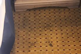 and carpet picture of americas best value inn