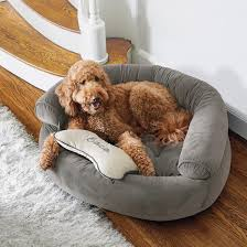 fy Couch Pet Bed