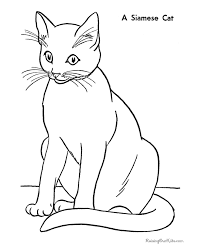 Free Printable Siamese Cat Coloring Page