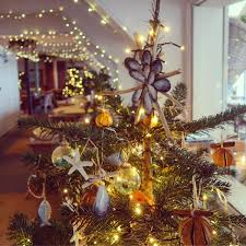 Christmas Tree Shop Falmouth Mass by My Cornwall Directory Travel With Penelope U0026 Parker