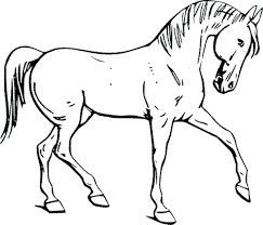 Free Printable Horse Coloring Pages For Adults Advanced Race Bella Sara Archives Horses Full Size