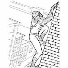 Spiderman Climbing On Wall