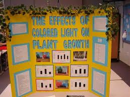 Science Fair Display