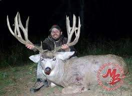 31 best big game photos images on pinterest big game utah and