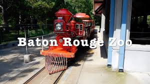 Halloween Express Baton Rouge by Baton Rouge Zoo Train Ride Youtube