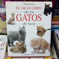 EL MAR ANIMALES ES ANIMALES ESCONDIDOS