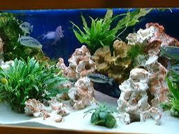 aquarium d eau douce décors sculptés à l unité roches pour eau douce aquaroche